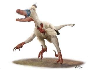 Source : http://www.futura-sciences.com/planete/photos/paleontologie-dessine-moi-dino-michel-fontaine-680/photos-variraptor-couleurs-4455/