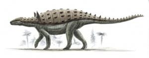 Source : http://dinopedia.wikia.com/wiki/File:Struthiosaurus-Alain-Beneteau.jpg